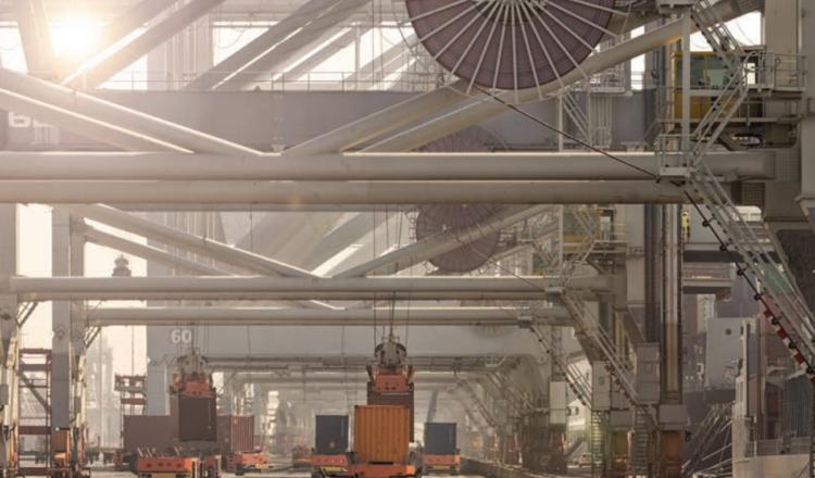 Automatización de Terminales: Más allá de la tendencia
